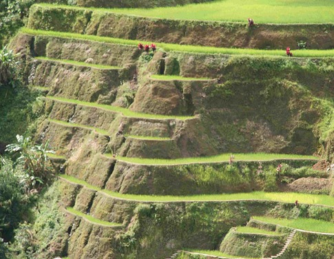 Banaue rice terrace – Philippines