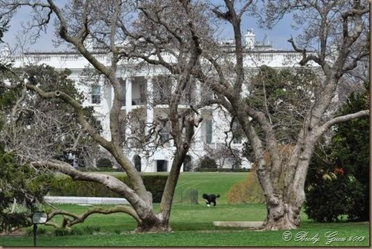 04-02-14 White House 10