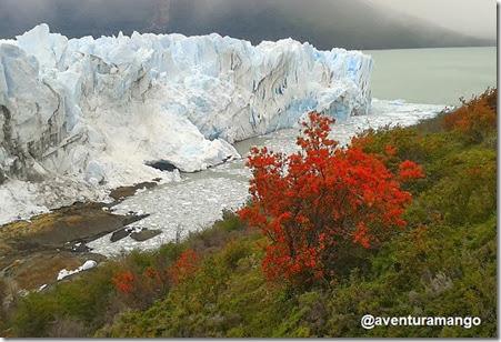 Notro e o Perito Moreno