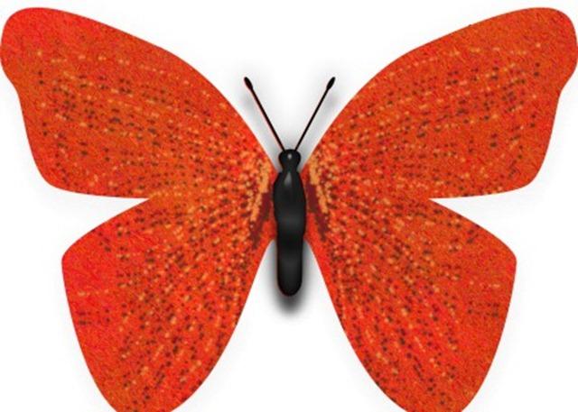 butterfly 1 WEB