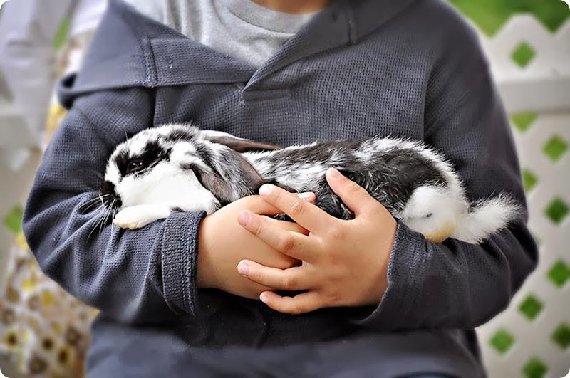 Cuddling1