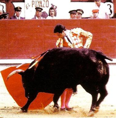 Fernando Camara (Cossio 12-30) Foto p. 320 001