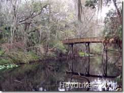 Hillsborough River State Park 006