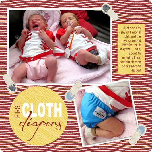 Twins First Cloth Diapers jpg