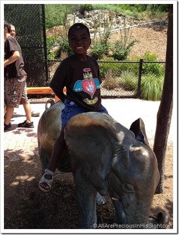 zoo May 19.2012 092