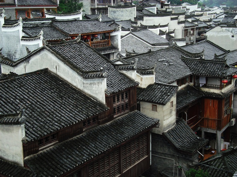 fenghuang-7