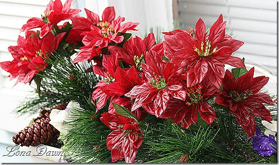Windowbox_Christmas_Pantsies
