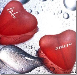 22. amor (13)