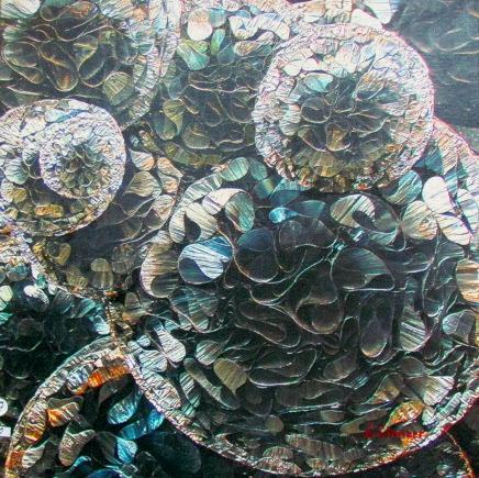 Pod mikroskopom - Sergey Shnicer.jpg