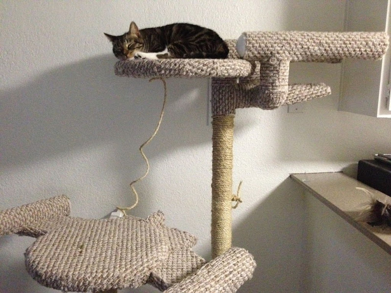 Star Trek Cat Tree DIY from hatstand4510 on Instructables