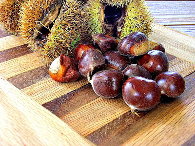 [chestnuts%2520cu%255B5%255D.jpg]