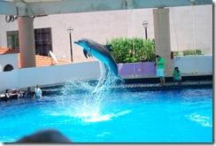 Cancun2012 227