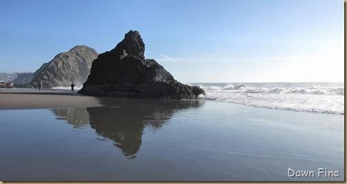 Harris Beach_116
