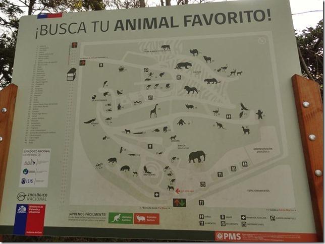 Santiago_Zoo_DSC03610