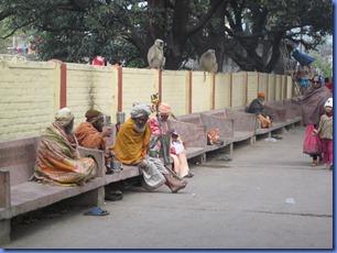 india 2011 2012 676