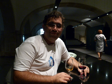 Things to see in Porto: taste Porto wine in Sandeman cave