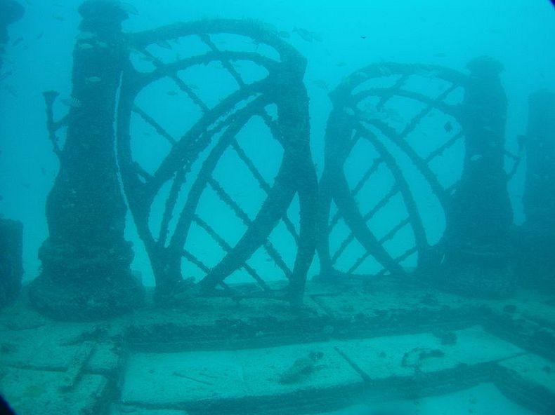 مقبرة بشرية أعماق البحر neptune-reef-4%5B2%5D.jpg?imgmax=800