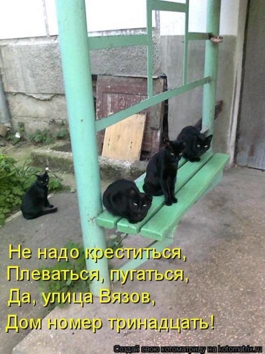 6d36b0eb8ab63fc6363eec5198e_prev