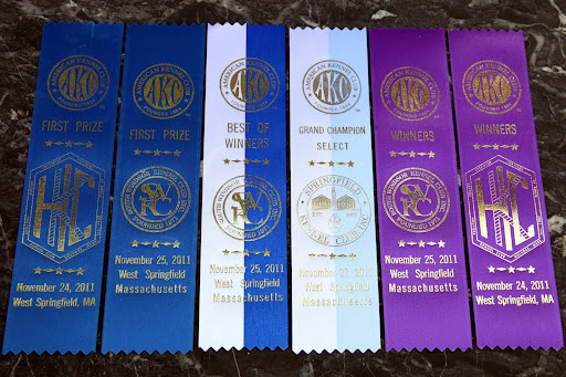 Just look at all of these winning ribbons!  G.K., you're really on your way to the top!  Sharkey and I are so proud of you!