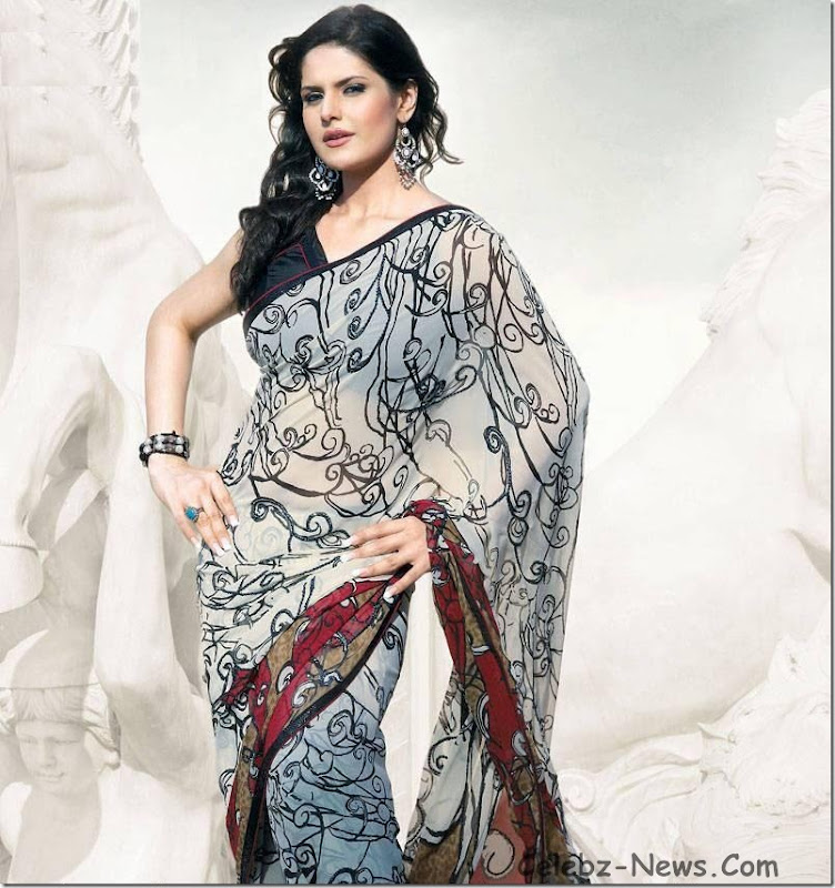 zarine-khan-saree-9