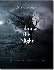 Embrace the Night Cover