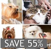 Deal Star Pets