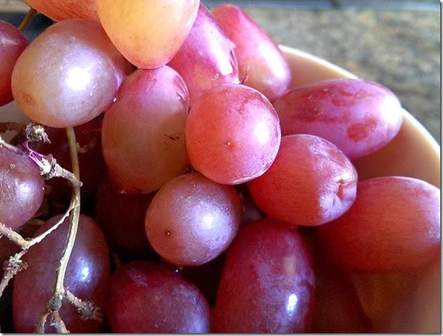 grapes-public-domain-pictures-1 (2298)