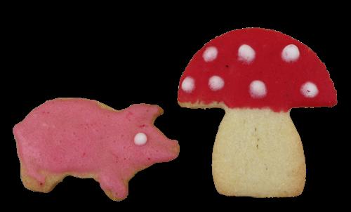 SchweinPilz