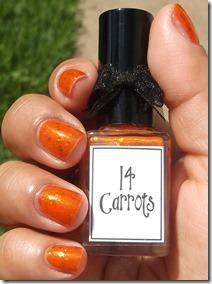 carrots17