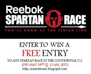 ReebokSpartanRacepic