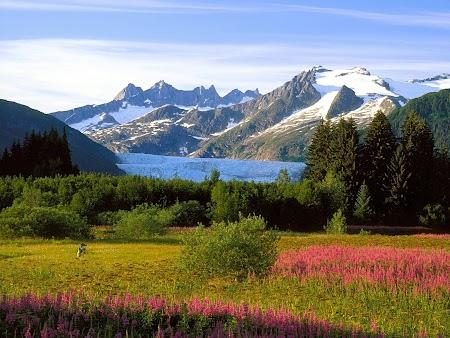 Ghetar Mendenhall - Alaska