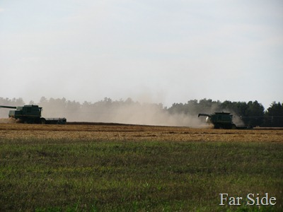 Combines in the field