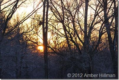 sunrise12-23-12