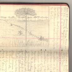 Muir Sketch #6.jpg