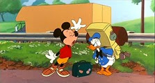 24 Mickey et Donald