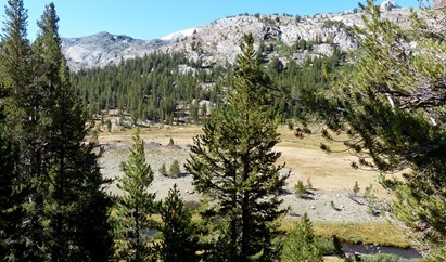 Hike from Sawmill Walk-In Campground, tried to find Green Treble Lake