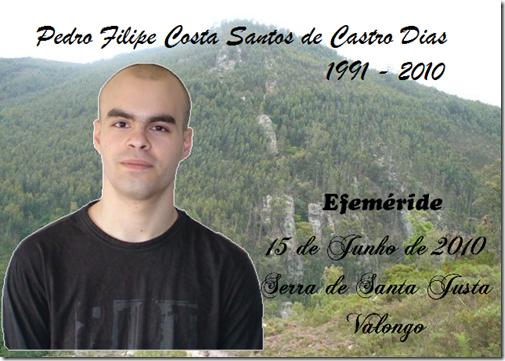 Pedro Filipe Castro Dias