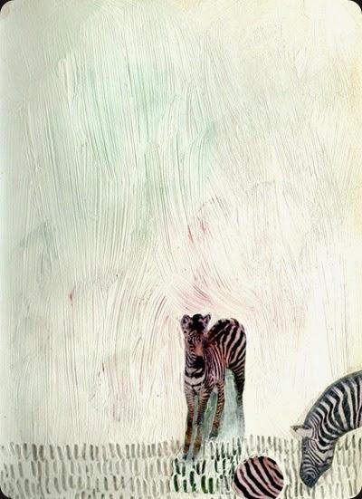 zebraball