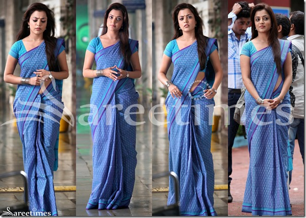 Nisha_Agarwal_Blue_Cotton_Saree