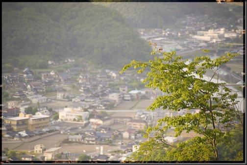 D700_2012-05-22_005