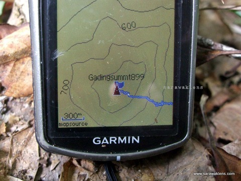 gunung_gading_summit_hike_46