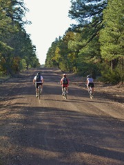 Riding back from Walnut Canyon to Flagstaff