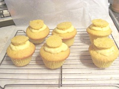 Boston cream pie cupcakes filled w vanilla pudding