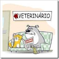 jogos-de-veterinario