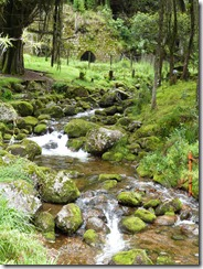 Nacimiento Rio Fucha