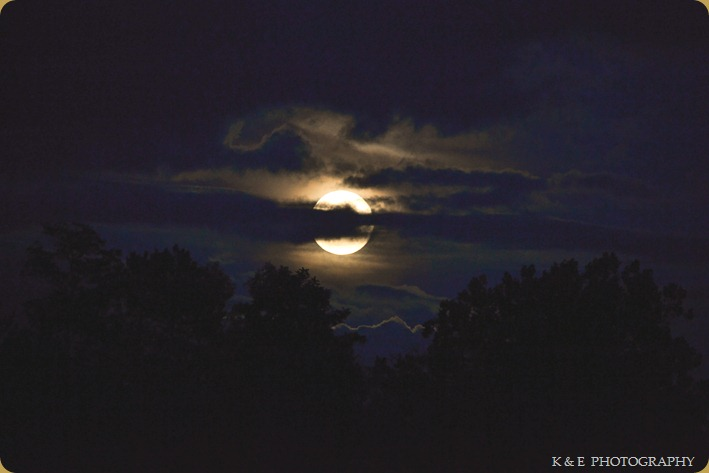 HARVESTMOON (1 of 1)
