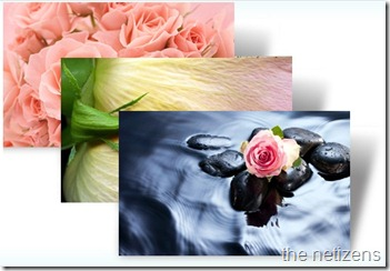 valentines_day_roses_theme_windows_7