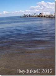 2012-01-24 Pine Island Florida 002