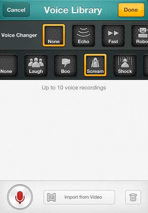 VoicePic