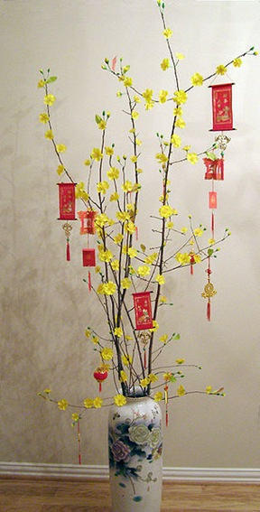 Hoa_mai Vietnam Tet lunar new year tree
